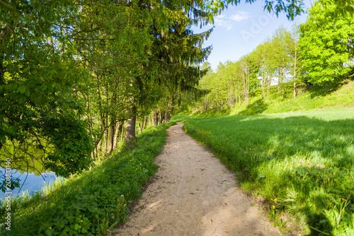 Fotobehang Weg in bos Droga pośród łąk i drzew w Szurpiłach pod Górą Zamkową