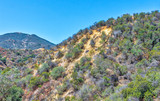 Dry summer hiking area in Southern California mountains on extremely hot day