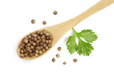 coriander seed and leaves in wooden spoon isolated on white background. Top view. Flat lay pattern - 208830349