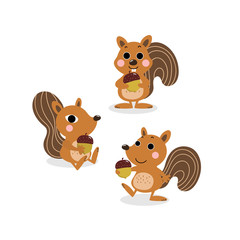 cute squirrel and nut cartoon vector. animal character