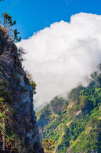 Foto Murales Spectacular views in the mountains. Madeira. Portugal