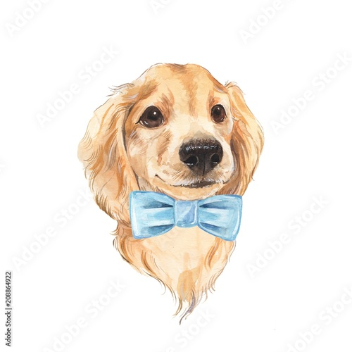 Cute dog sketch. Hand painted. Watercolor illustration. - 208864922