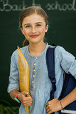 Beatiful smiling pupil in classroom at the elementary school, back to school. - 208866953