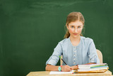 Beatiful smiling pupil in classroom at the elementary school, back to school. - 208868704