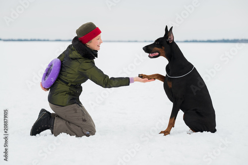 Training and playing with dogs Dobermans on a snowy field in winter