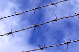 Barbed wire and sky backdrop. - 208881134