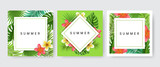 Card frame set with palm leaf, exotic flower for tropical design. Vector illustration, paper card collection with three designs - 208883932
