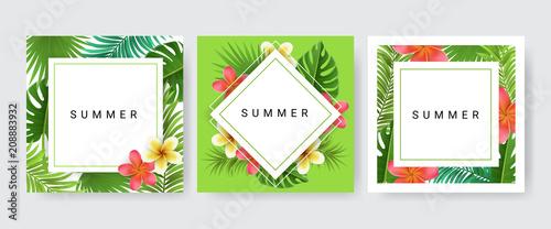 Zestaw ramek do karty z liści palmowych, egzotyczny kwiat do tropikalnego designu. Ilustracji wektorowych, kolekcja kart papieru z trzema projektami