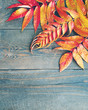 Colored Autumn leaves on wooden board, top view, copy space. Autumn background.