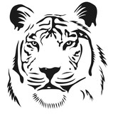 face tiger graphic image