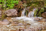 A stream in the Tatra National Park. Flowing clear mountain water, and around a lot of greenery - 208896968