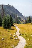 Hiking path in the Rockies
