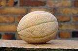 stück und runde Galiamelone melone liegend - 208899333