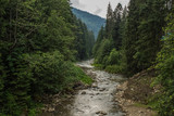 river between mountain forest nature landscape