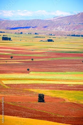 Field - Hasbey Village Sivas, Turkey