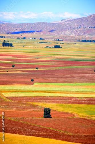 Fotobehang Landschappen Field - Hasbey Village Sivas, Turkey