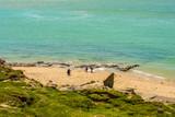 falille jouant sur la plage - 208914127