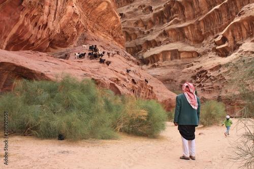 Fotobehang Diepbruine Jordan Wadi Rum