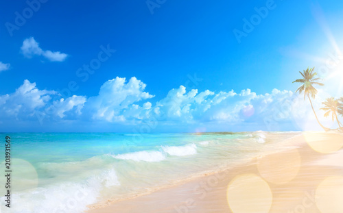 Art Beautiful sunset over the tropical beach - 208931569