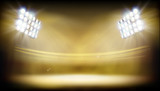 Stadium illuminated by floodlights. Abstract vector illustration. - 208934337