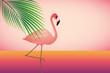rosa flamingo am rosa strand