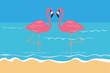 zwei rosa flamingos stehen im wasser am strand