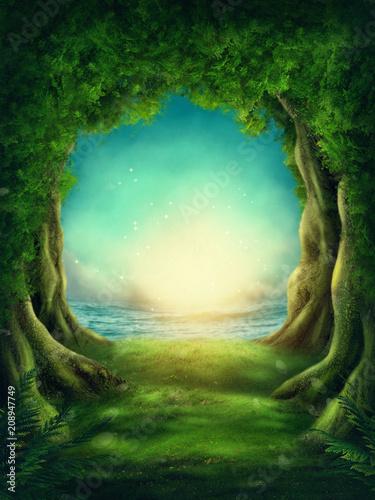 Dark magic forest - 208947749