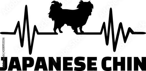 Japanese Chin heartbeat word
