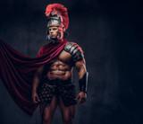 Portrait of a brutal Roman legionary in battle uniforms - 208954700
