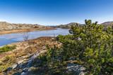 Winter in Norway - 208971555
