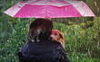 Friendship of a human with a cat and a dog. A kitten and a puppy are sitting hiding from the rain under an umbrella