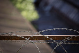 Barbed wire fencing for security purposes against thieves - 208975377