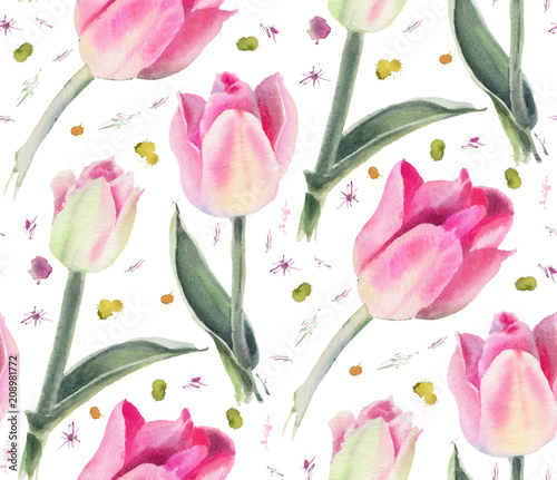 Watercolor flowers. Pink tulips. - 208981772