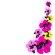 Hawaiian flowers, exotic plants, isolated on a white