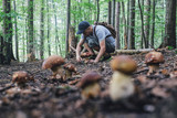 Man collect mushrooms in summer forest - 208983718