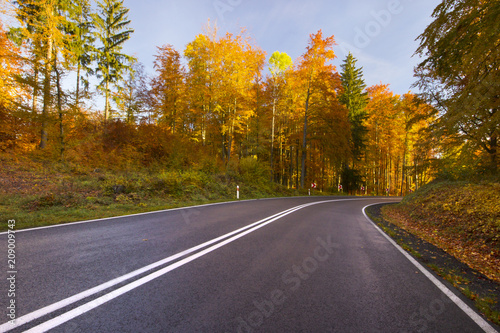 Aluminium Herfst Colorful beautiful autumn road. Northern Poland