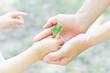 Quadro エコロジー 愛 誕生 平和