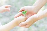 エコロジー 愛 誕生 平和   - 209010172