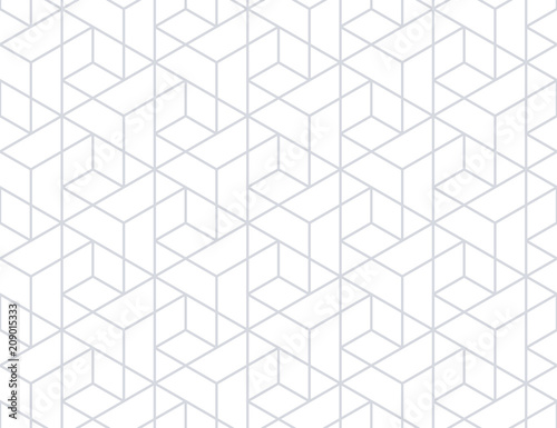 The geometric pattern with lines. Seamless vector background. White and grey texture. Graphic modern pattern. Simple lattice graphic design. - 209015333