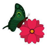 delicate flower and butterfly decoration vector illustration