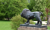 Löwenskulptur an der Treppe zum neuen Schloss mit Blick in den wundervollen Fürst-Pückler-Park
