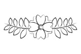 flower branch natural leaves decoration image vector illustration sketch