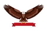 american eagle national red ribbon symbol vector illustration - 209031753