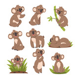 Koala bear set, Australian marsupial animal character in different situations vector Illustrations on a white background - 209033528