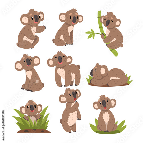 Koala bear set, Australian marsupial animal character in different situations vector Illustrations on a white background