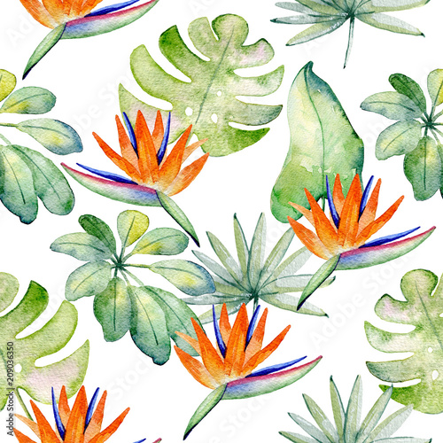 Tropical seamless watercolor pattern with green leaves. - 209036350