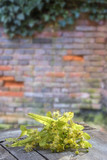 bunch of fresh linden blossom flower on wooden table with old red brick wall background. - 209038573