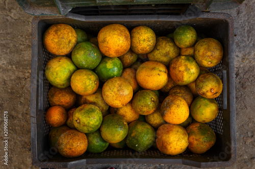 Crate of Oranges at a Produce Stand in Havana Cuba
