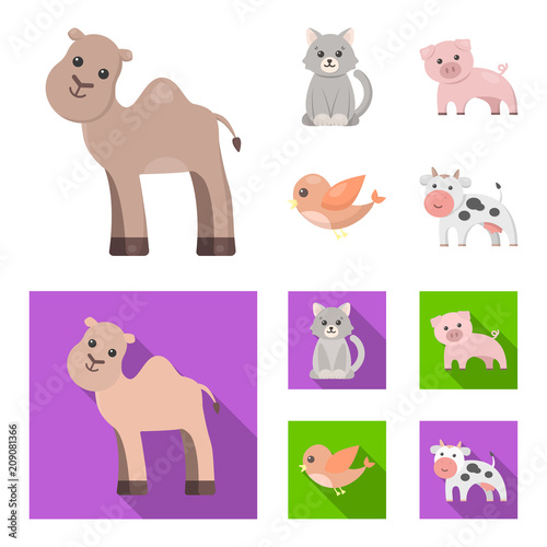 An unrealistic cartoon,flat animal icons in set collection for design. Toy animals vector symbol stock web illustration.