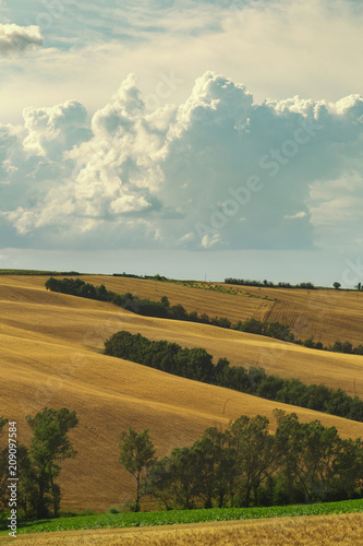 Countryside landscape, cultivated fields and cloudy sky